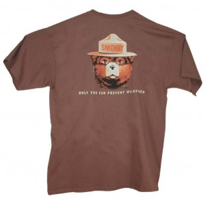 Smokey Wildfire Prevention T-shirt, Adult