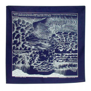 Clouds Bandana