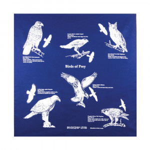 Birds of Prey Bandana