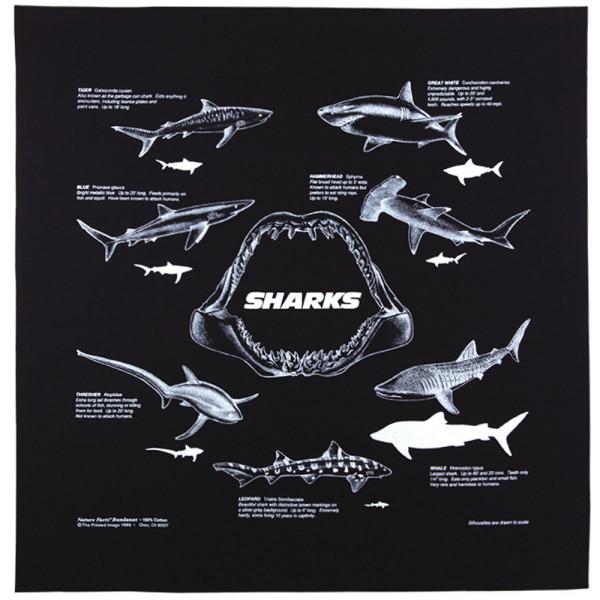 Sharks Bandana