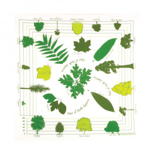 Trees Of North America Bandana