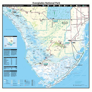 Everglades Bandana, Topo