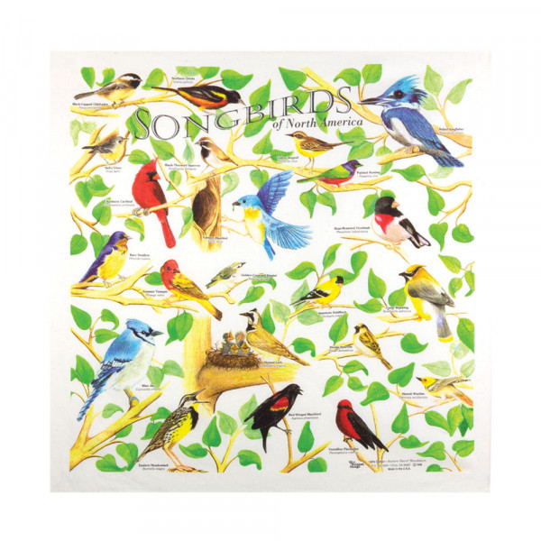 Songbirds Bandana
