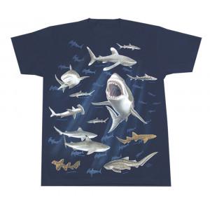 Sharks T-Shirt, Youth
