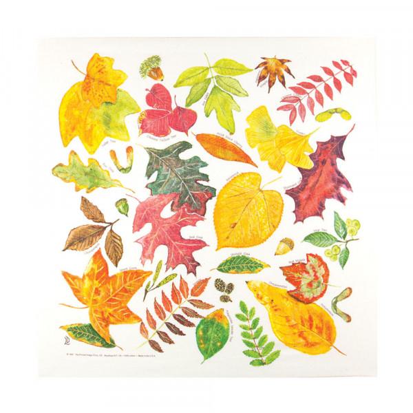 Fall Leaves Bandana