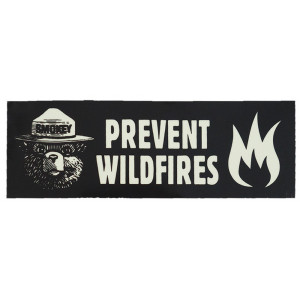 Smokey Prevent Wildfires Sticker